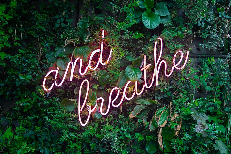 deep breathing activates the vagus nerve